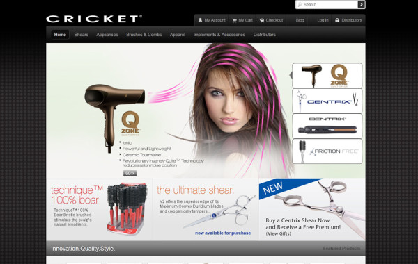 Business Website Setup
